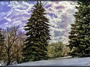 Winter Landscapes Gallery