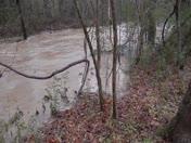 Flooding Creek Jan 2014