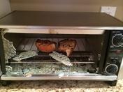 Black and Decker Toaster Oven Glass Door Shatters
