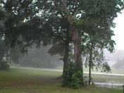 Heavy Evening Rain