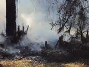 Brush Fire Vid 4
