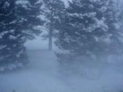 Blizzard Dec. 9, 2009