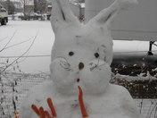 """Snow bunny """"09"""""""