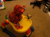 Mimi gets stuck.