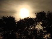 Sunrise in Adel