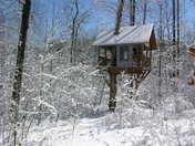 A snowy tree house
