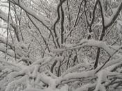 Snow day 2 029.JPG