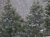 snow in wilkes county