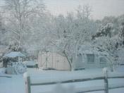 March 2_Snow