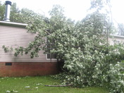 Tree down in Surry County about 430pm