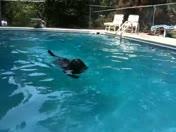 Cole Jr. Loves to Swim 2