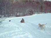 Grandpa Of 5 enjoying the snow by sledding!