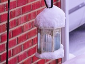 Winter from Crittenden, KY