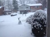 Jan 21, 2014 Snow