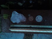 Hail. 2 inches across. Comparison picture.