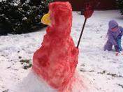 Card Bird Snow man