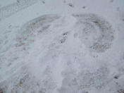 Snow Angel in Terry by the Cabin