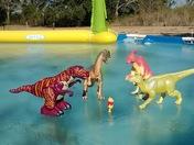 Frozen pool in Dulac, LA