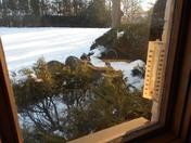 Deer raiding the bird feeder!