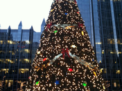 Christmas Tree @ PPG Place
