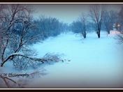 """""""Quiet Stillness of Winter"""""""