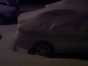 my car, and still coming down. From Tricia Merrill