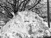 No more snow! no more room for it!