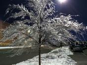 icy night