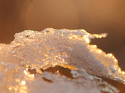 Golden glowing ice lace
