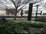 Snow in Greenville