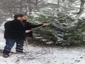 Tree care tip for the snow storm