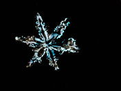 Snow Flake 2014
