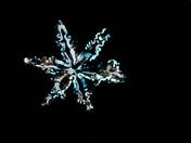 snow flakes 2014