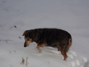Snow in Sparta