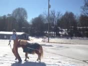 My pony pulling a sled