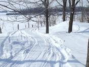 """""""Traces of Winter Fun"""""""