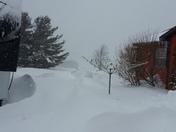 Snow,Snow & More Snow
