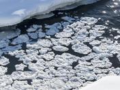 Frozen foam