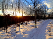 Winter Trails and Sunset Tales