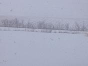 The Big Blizzard