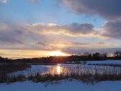 Sunset On Cattails