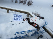 Iowa Nice Snowman