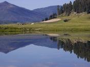 Valle Caldera Reflection