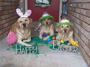 Easter Labs