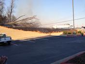 Power lines down in Springdale