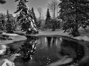 Winter in the cariboo