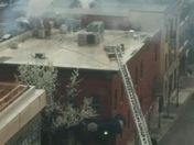WildWing Rooftop-fire