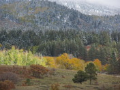 Beautiful Winters in Chama New Mexico
