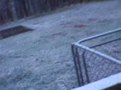 Snowfall March 25, 2014