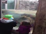 My kids at FP zoo